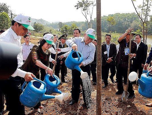 Trồng cây mang lại lợi ích to lớn cho đất nước
