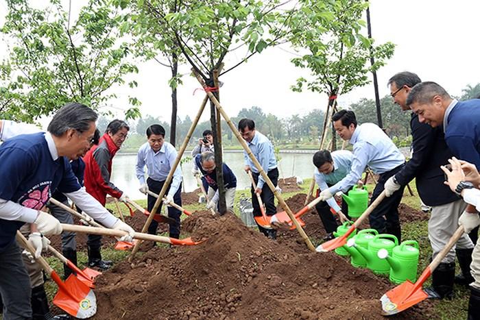 Trồng thêm 1.000 cây hoa anh đào tại Công viên Hòa Bình