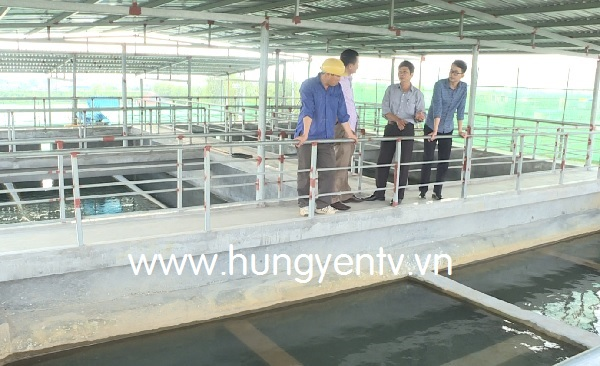 Hưng Yên: Cần sự đồng thuận cao của chính quyền, người dân trong cấp nước sạch