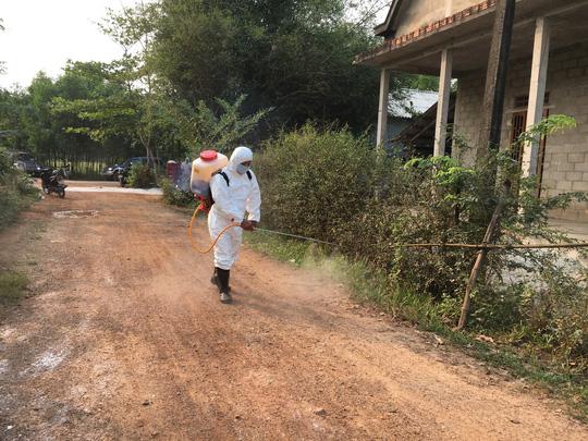 Dịch tả lợn châu Phi lần đầu xuất hiện tại Thừa Thiên Huế