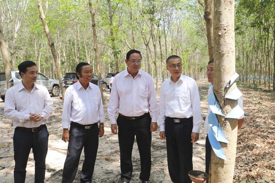 Tháo gỡ khó khăn cho doanh nghiệp cao su Việt Nam tại Campuchia