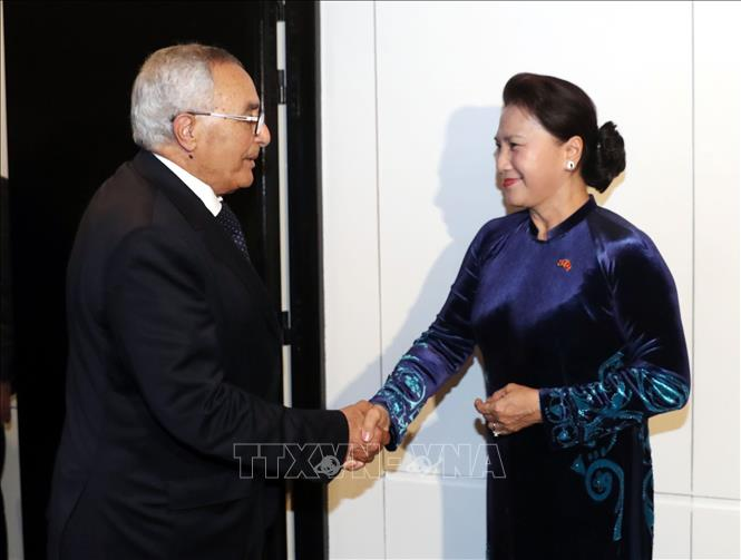 Tăng cường các hoạt động giao lưu nhân dân giữa Việt Nam và Maroc