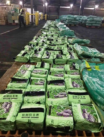 Hợp tác thành công Việt Nam và Philipin trong bắt giữ 276kg ma túy đá