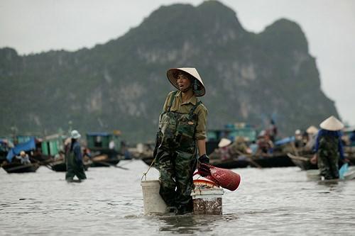 Thăm chợ cá Bến Do