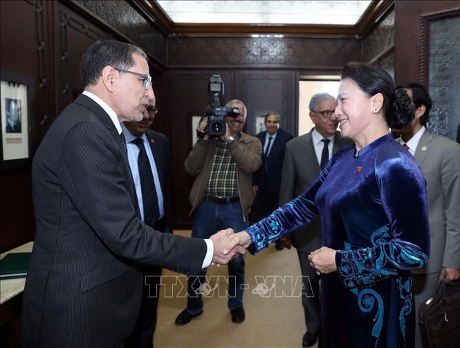 Tích cực đẩy mạnh hợp tác giữa Việt Nam và Maroc