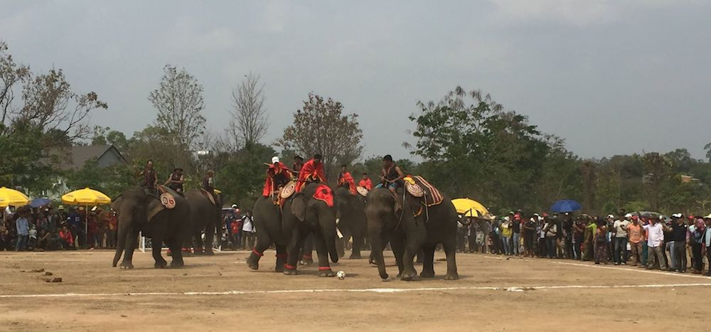 Đắk Lắk tổ chức Hội voi Buôn Đôn năm 2019