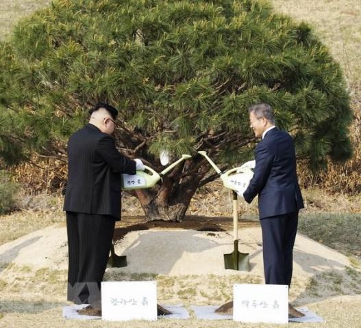 Hội nghị thượng đỉnh Nga-Triều được nhiều nước kỳ vọng