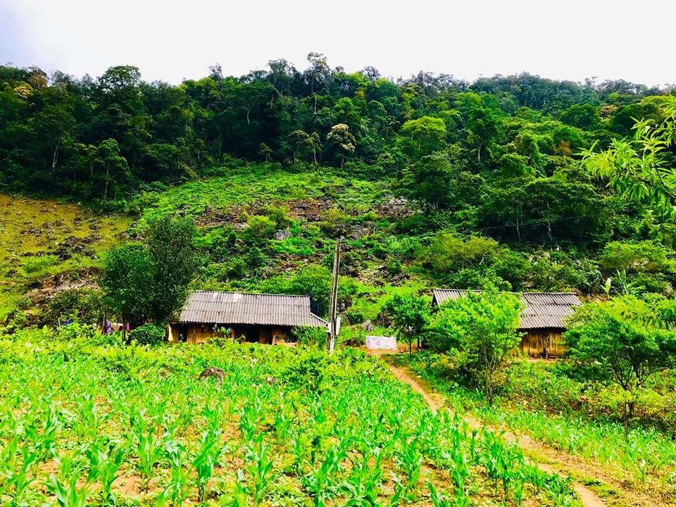 Pa Phách - thiên đường xanh trên cao nguyên Mộc Châu