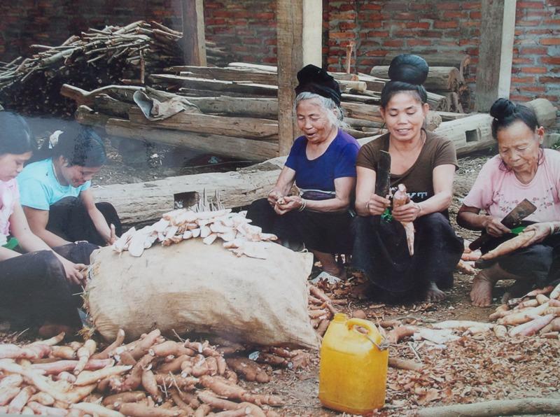 Các yếu tố ảnh hưởng đến sự phát triển kinh tế - xã hội của dân tộc thiểu số tại Việt Nam