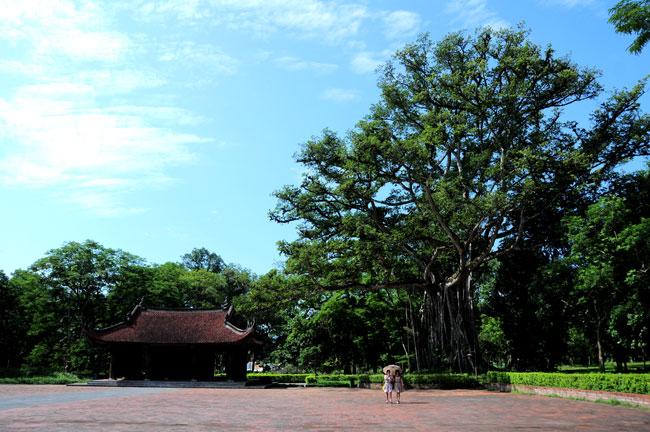 Dấu xưa Lam Kinh