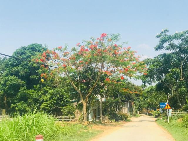 Nắng nóng gay gắt vẫn diễn ra ở Bắc, Trung Bộ