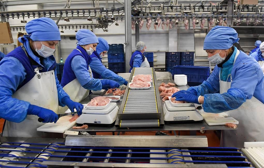 Nhật Bản xem xét bỏ lệnh cấm nhập khẩu thịt gà từ Nga