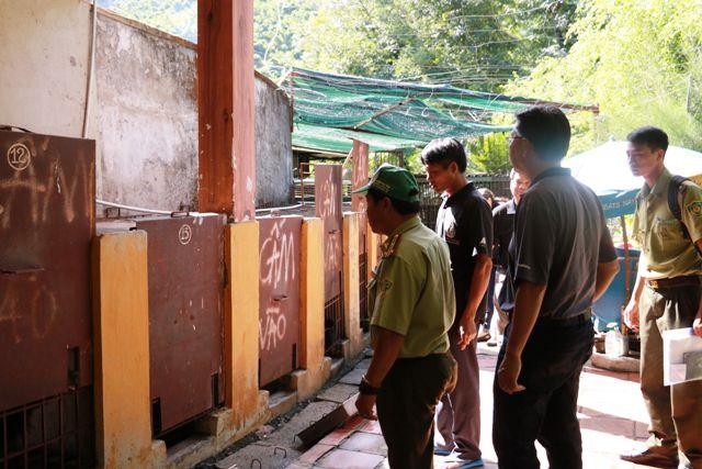 Cứu hộ 4 cá thể gấu tại TP Nha Trang