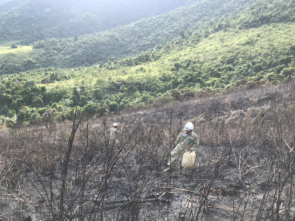 Thợ truyền tải vác từng can nước lên núi chữa cháy