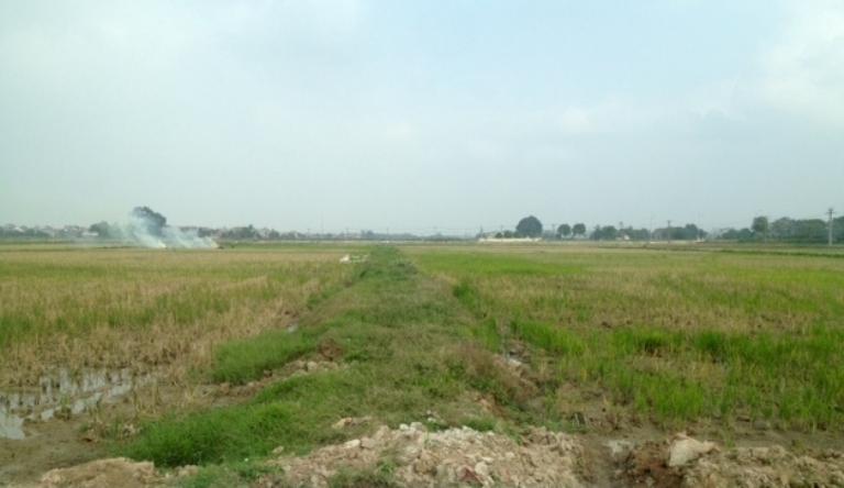 Từ 1/8 sẽ triển khai thực hiện kiểm kê đất đai, lập bản đồ hiện trạng sử dụng đất
