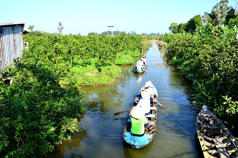Phát triển du lịch nông nghiệp Đồng Tháp
