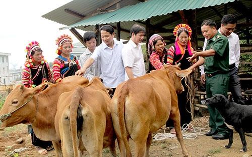 Lời giải bài toán giảm nghèo ở Lai Châu