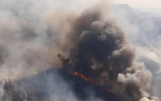 Tổng thư ký Liên hợp quốc kêu gọi hành động cứu rừng Amazon