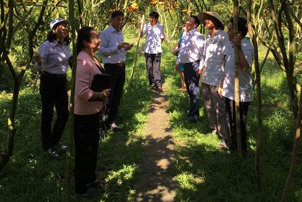 Hội quán nông dân- mô hình phát triển kinh tế mới ở Đồng Tháp
