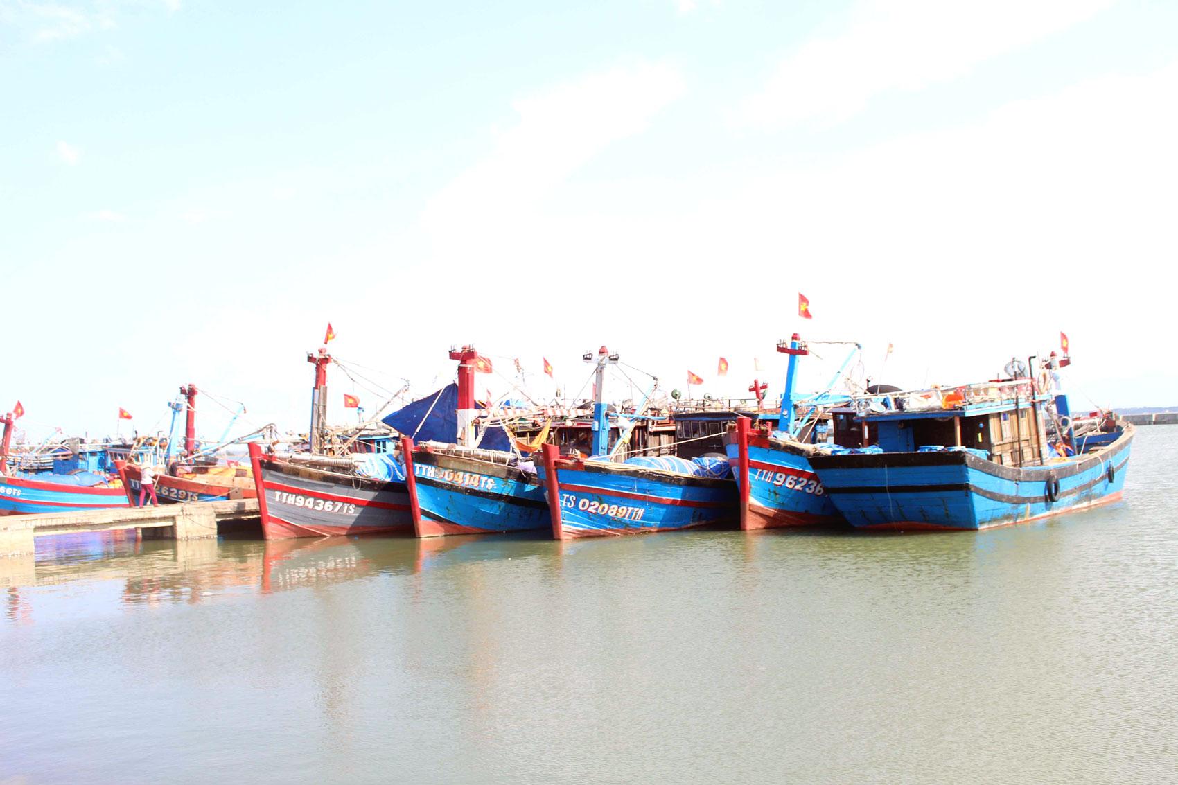Thừa Thiên Huế: Nông, lâm, ngư nghiệp tăng trưởng tốt