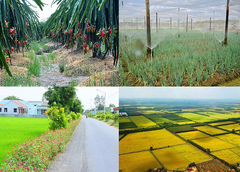 Long An huy động hơn 123 nghìn tỷ đồng xây dựng nông thôn mới