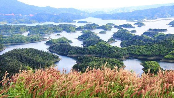 Nghiên cứu, phát triển du lịch sinh thái tại vườn quốc gia, khu bảo tồn