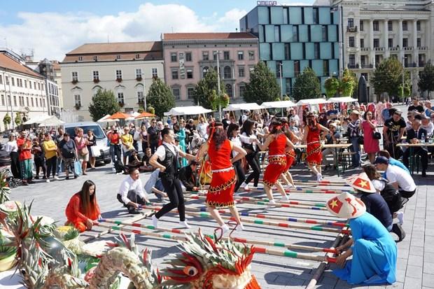 Ngày Văn hóa Việt Nam đậm tình hữu nghị Việt-Séc ở Nam Morava