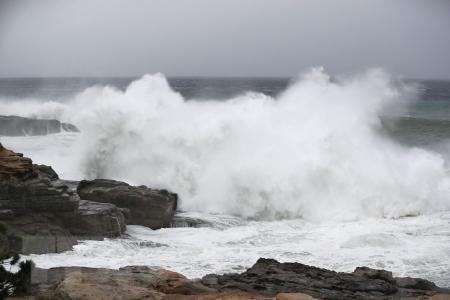 Siêu bão Habigis gây nhiều thương vong, thiệt hại tại Nhật Bản