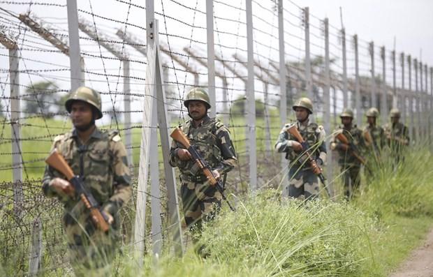 Đấu súng tại khu vực biên giới Ấn Độ - Pakistan gây nhiều thương vong
