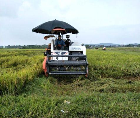Nông thôn mới đóng góp lớn vào nâng cao đời sống nông dân