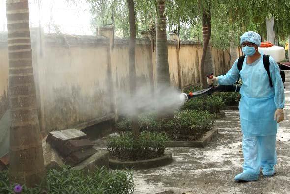 Tăng cường phòng chống sốt xuất huyết Dengue