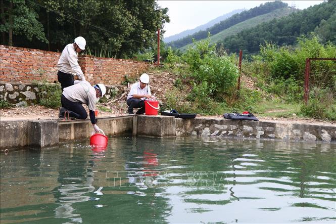 Tổng GĐ Công ty nước sạch Sông Đà: Nước cung cấp cho khách hàng đảm bảo tiêu chuẩn của Bộ Y tế