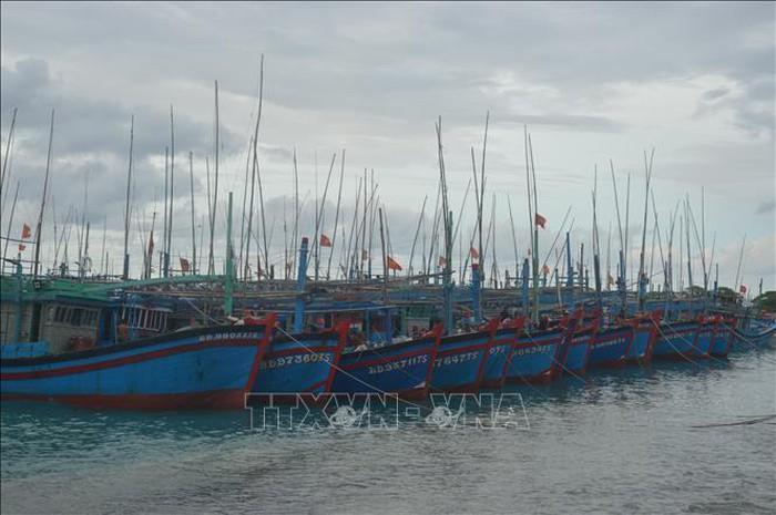 Thông báo cho gần 600 tàu cá chủ động tránh bão số 6
