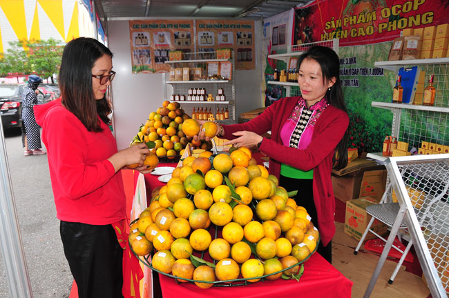 Tuần lễ giới thiệu nông sản an toàn của tỉnh Hòa Bình