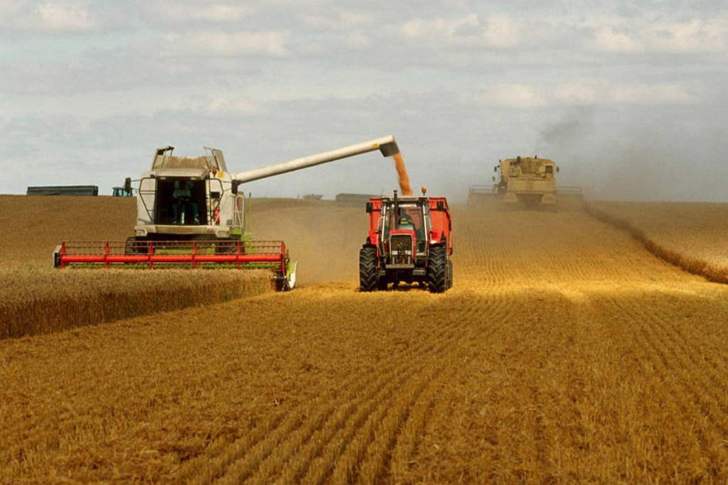 Chỉ số giá lương thực tăng trong tháng 10