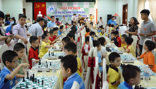 Quang Ninh bags two golds at age-group Northern open chess 2016 tour