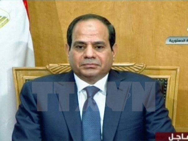 Egypt's President to run for second term