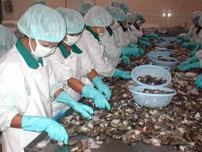 Improving competitive advantage for Vietnam's shrimp