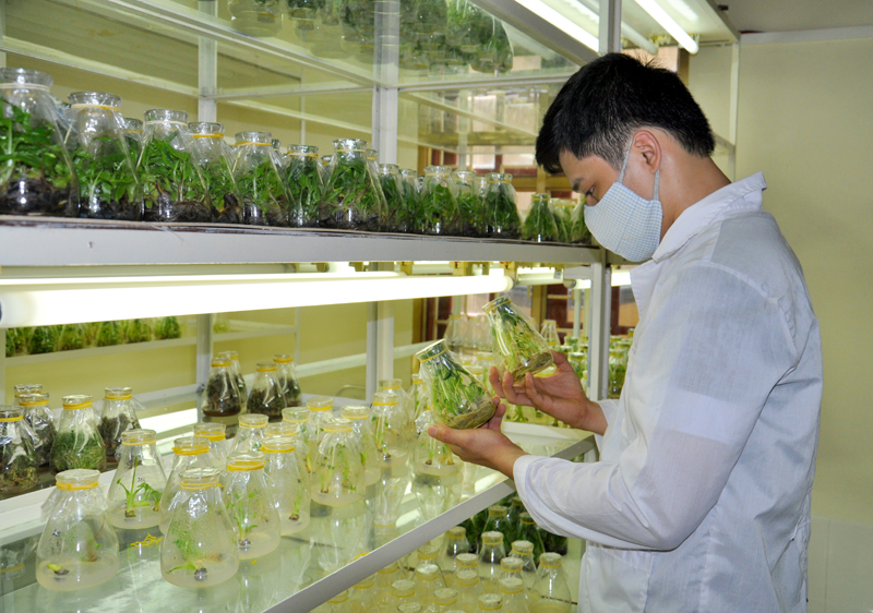 Quang Ninh province supports science and technology research and application
