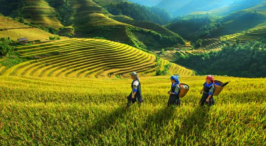 Vietnam - Top low-cost destination in 2017