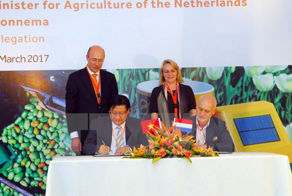 Dutch firms seek investment and business opportunities in Vietnam