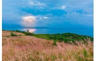 Hill of poetic reeds in Binh Ba Island