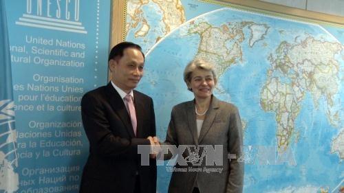 UNESCO values Vietnam's contributions