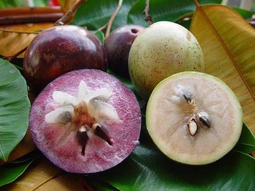 Star apples get visa to enter US market