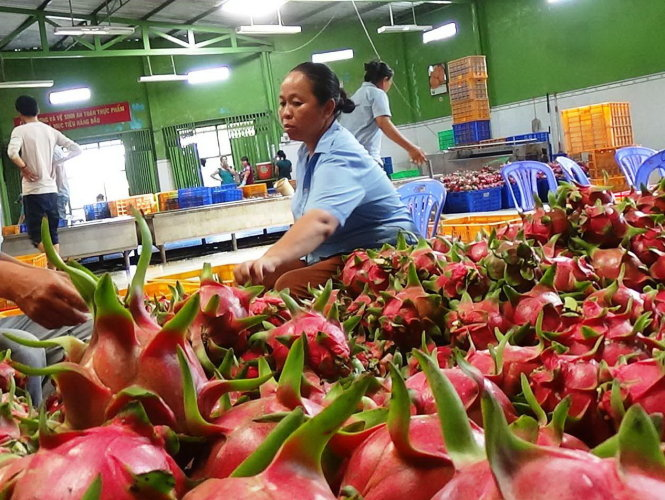 Thailand ships most fruits and vegetable to Vietnam in first quarter