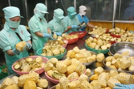 Fruit, vegetable exports hit USD1.38 billion in five months