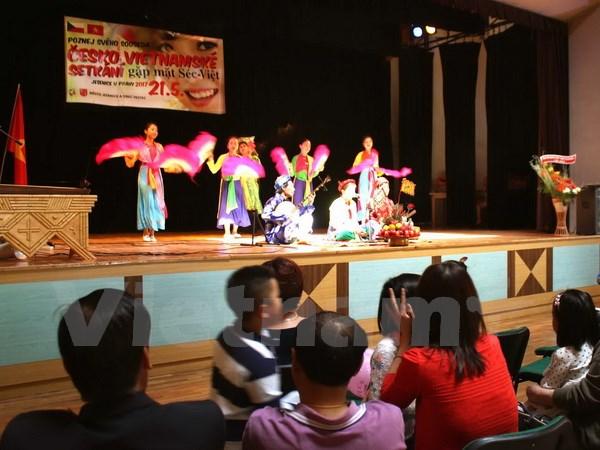 Czech-Vietnamese Cultural Festival held in Czech Republic