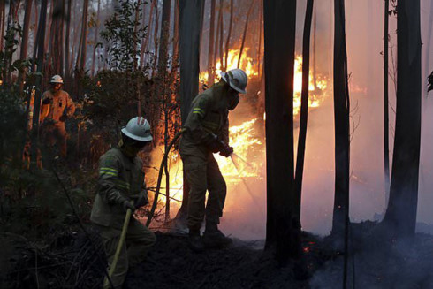 Massive forest fire in Portugal kills at least 62
