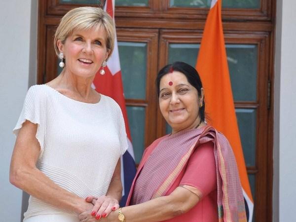 Australian Foreign Affairs Minister Julie Bishop meets counterpart
