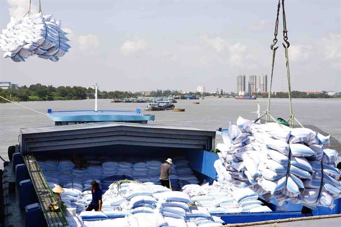 Vietnam wins bid to sell 175,000 tons of rice to Philippines